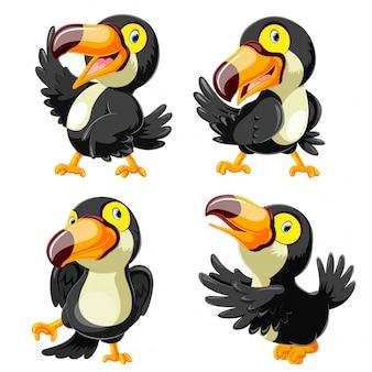Coleção de desenho animado tucano feliz com apresentação