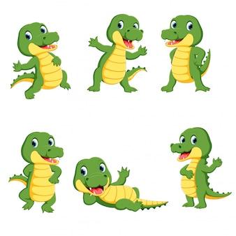 Coleção de desenho de personagem de crocodilo bonito