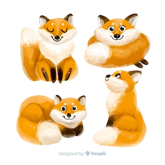Coleção de desenhos de raposa em aquarela