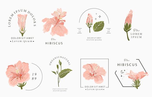 Coleção de design de beleza oculta com hibiscos
