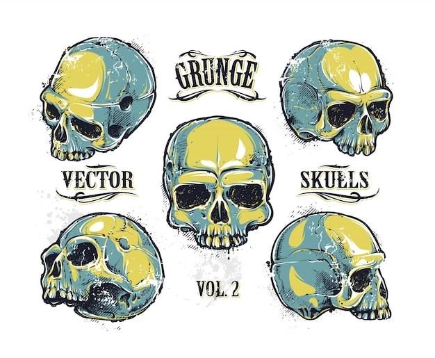 Coleção de design de crânio