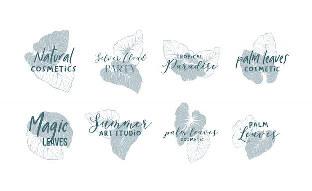 Coleção de design de logotipo de folhas de palmeira