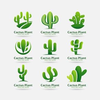 Coleção de design de logotipo de planta de cacto