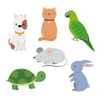 Coleção de diferentes animais de estimação