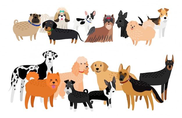 Coleção de diferentes raças de cães