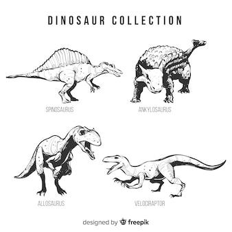Coleção de dinossauro realista mão desenhada