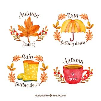 Coleção de distintivos de outono
