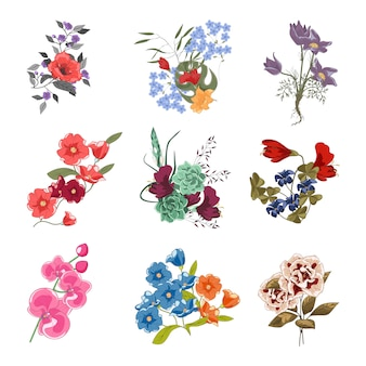 Coleção de diversos buquês de flores