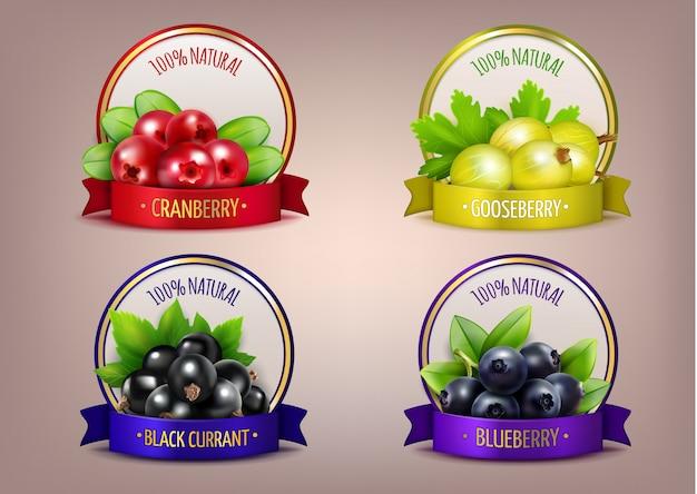 Coleção de eco realista de rótulos berry