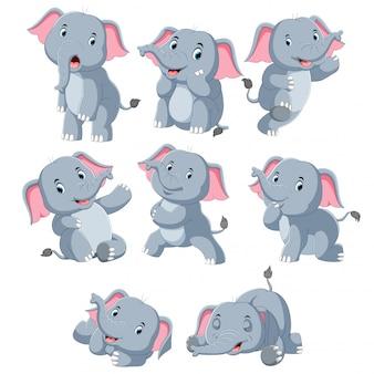 Coleção de elefante feliz com vários posando