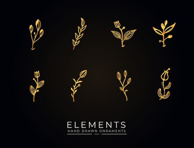 Coleção de elementos botânicos desenhados à mão dourada