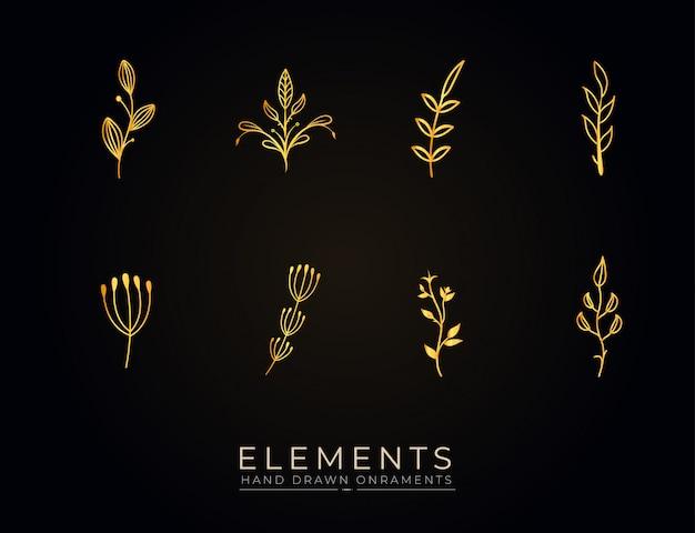 Coleção de elementos botânicos desenhados à mão