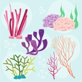 Coleção de elementos de algas marinhas