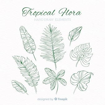 Coleção de elementos de decoração tropical