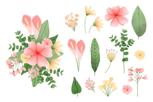 Coleção de elementos de flores em aquarela pintada à mão