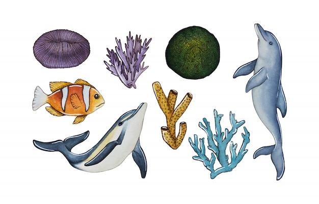Coleção de elementos de golfinhos, corais e peixes