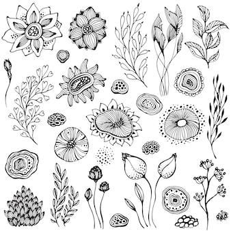 Coleção de elementos de natureza de fantasia desenhada à mão, flores, plantas, ramos. conjunto de vetores de preto e branco.