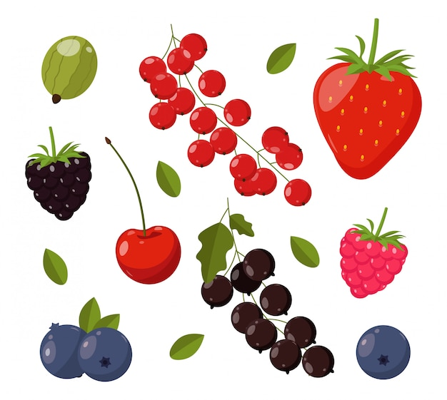 Coleção de elementos de verão bonito, banner tropical, berry conjunto isolado