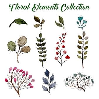 Coleção de elementos florais de aquarela