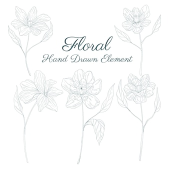 Coleção de elementos florais desenhados à mão Vetor Premium