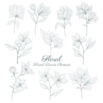 Coleção de elementos florais desenhados à mão