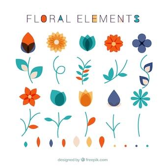 Coleção de elementos florais e folhas