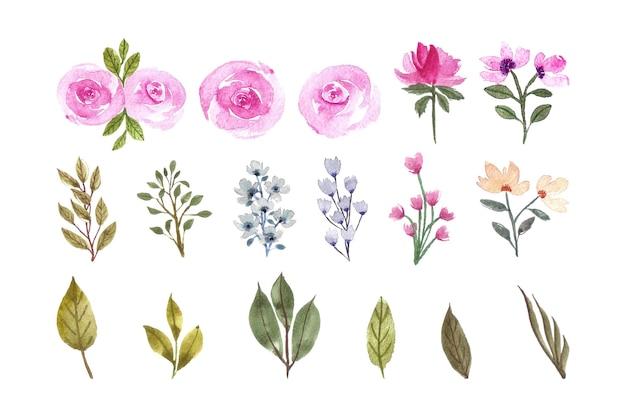 Coleção de elementos florais em aquarela linda