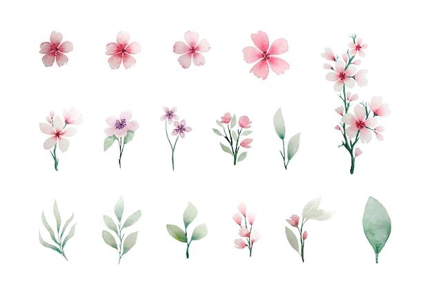Coleção de elementos florais em aquarela