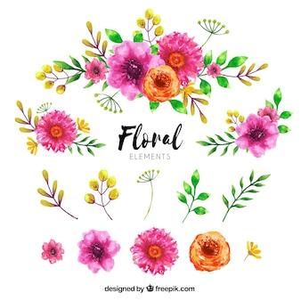 Coleção de elementos florais em estilo aquarela