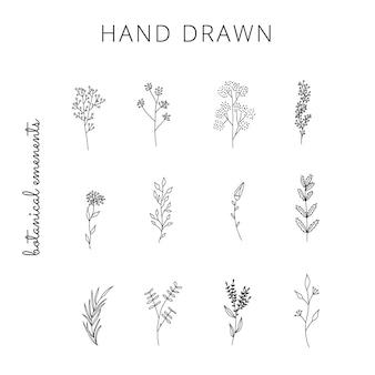 Coleção de elementos florais simples desenhados à mão