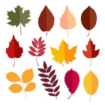Coleção de elementos outono