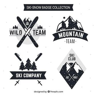 Coleção de emblemas de esqui