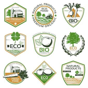 Coleção de emblemas eco orgânicos coloridos