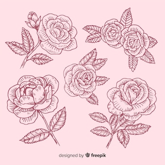 Coleção de esboços rosa mão desenhada