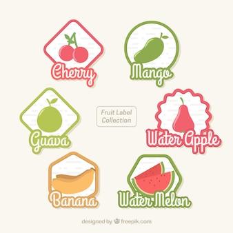 Coleção de etiquetas de frutas
