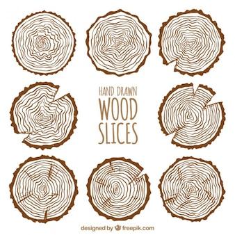 Coleção de fatias de madeira