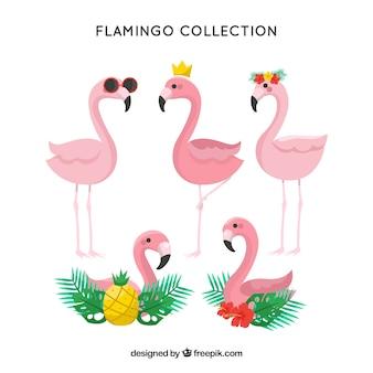 Coleção de flamingos bonito na mão desenhada estilo