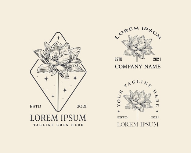 Coleção de flores abstratas, sinais de vetor ou modelos de logotipo ilustração floral retrô com classe