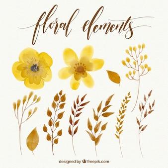 Coleção de flores amarelas aquarela