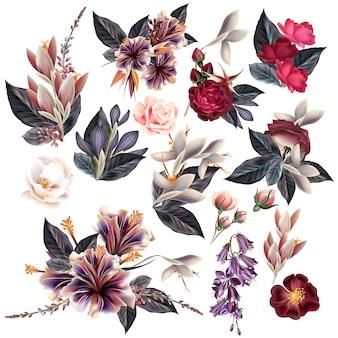 Coleção de flores bonitas