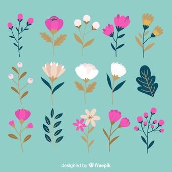 Coleção de flores botânicas