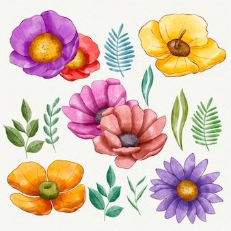 Coleção de flores coloridas pintadas à mão