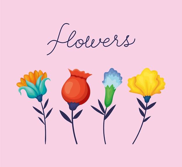 Coleção de flores da natureza