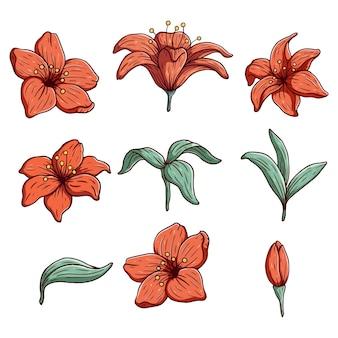 Coleção de flores de hibisco com estilo de desenho ou desenho à mão