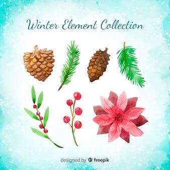 Coleção de flores de inverno em aquarela