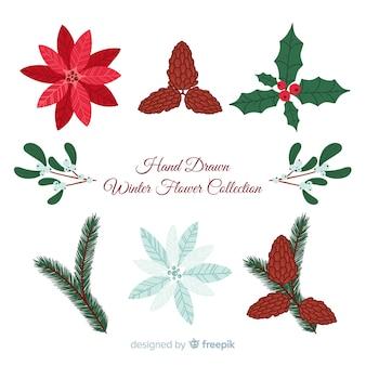 Coleção de flores de inverno