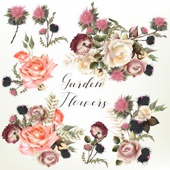 Coleção de flores de jardim