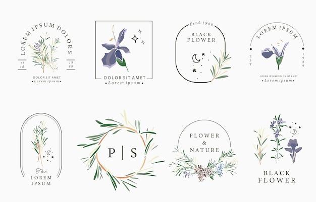 Coleção de flores de linha com alecrim.