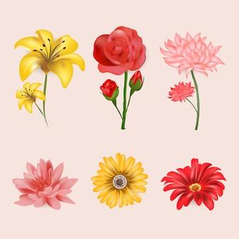 Coleção de flores de primavera realista