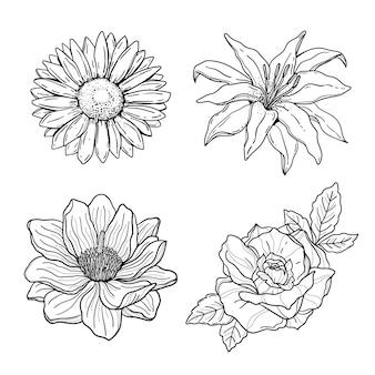 Coleção de flores desenhadas à mão para gravura